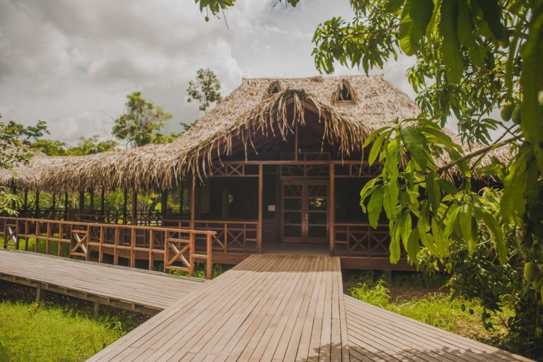 """Ecological """"lodge"""" in the heart of the Amazon selva"""