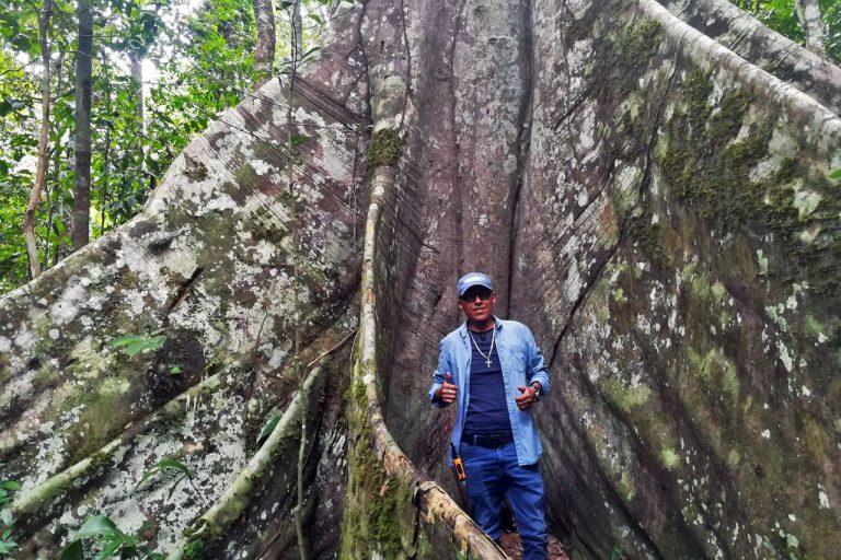 Walk to the magic Lupuna tree (trekking) – Caserio of Santa Teresa
