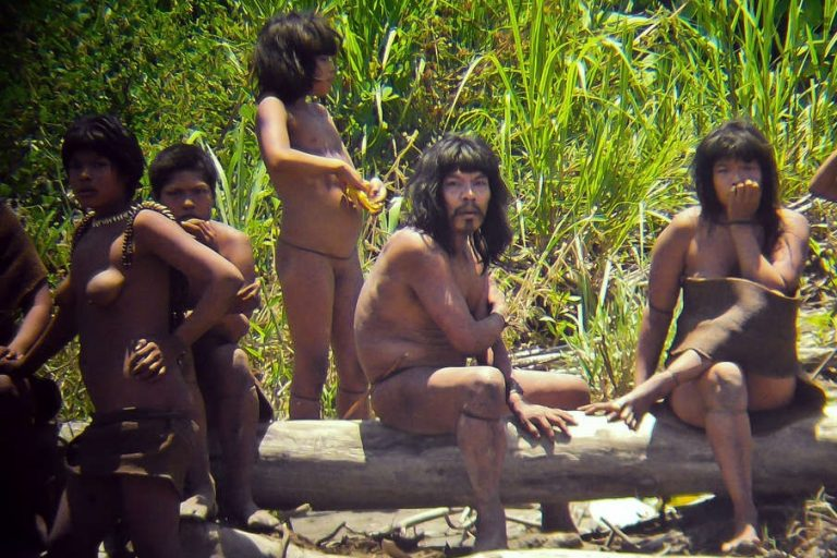 Meeting with a man-eater, or Who are the real cannibals of Peru?